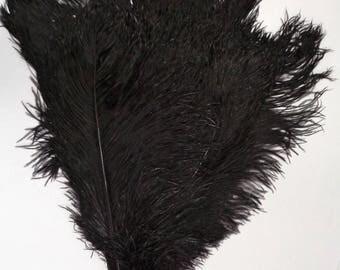 Black Ostrich Feathers 8-12 inch  per 3