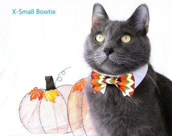 Fall Chevron Bow Tie, Necktie, or Bow on a Shirt Style Collar for both Dogs & Cats