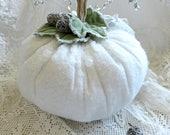 Winter Pumpkin ~ White