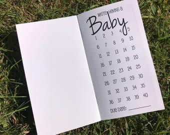 Traveler's Notebook PERSONAL Size Pregnancy Kit
