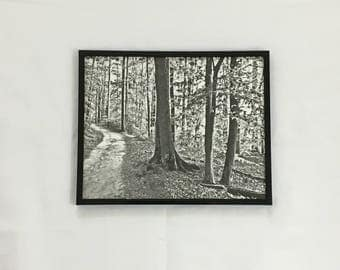 Forest Print, Black and White Print, Woods Wall Art, Nature Photography, Landscape Art, 8x10 Print, 11x14 Print, 16x20, Housewarming Gift