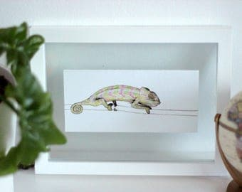 Original Chameleon Drawing: Coloured Pencil Realism