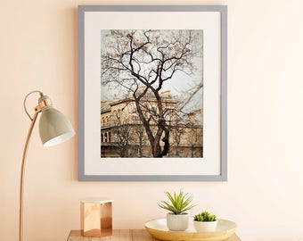 Tree art photography, Paris print, City large wall art, grey beige oversized art, living room decor, large poster, 11x14, 12x16, 16x20 print