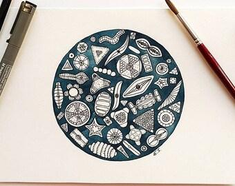 Science art Original watercolor painting Diatoms fossils Sea underwater living Microbiology Algae Biology Geometric painting