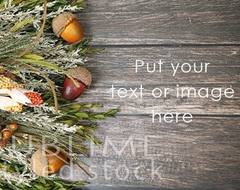 Fall Background /  Fall Styled / Stock Photo / Wood Background / Acorns / Autumn / Fall Foilage  / Social Media Stock / StockStyle-887