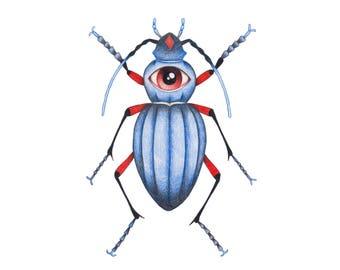 Bug Collection. Original