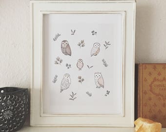 Owl Print - Owl Decor, Owl Nursery Decor, Owl Illustration, Watercolor Owls, Kids Wall Art, Bird Print, Gift for friend, Whimsical Owl Print