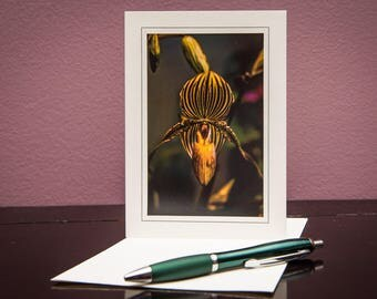 Orchids No.5-Greeting cards-Note Cards-Flower-Nature-Happy Birthday-Family-Love-Photo Card-Floral-Wedding-Celebration-Congratulation-Gift