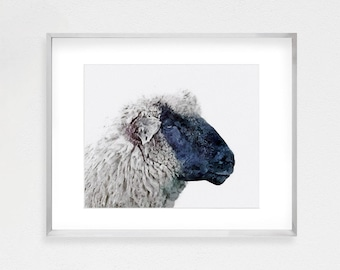 Sheep Print, Farm Animal Print, Baby Nursery Print, Baby Farm Animal Art, Digital Download, Large Poster Print, Farmhouse Wall Decor