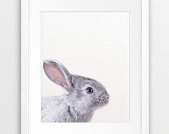 Rabbit Print, Rabbit Photo, Woodland Nursery Decor, Bunny Rabbit, Woodland Animals, Nursery Prints, Modern Wall Art, Kids Room Printable Art
