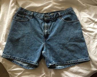 Levi Shorts / Jorts