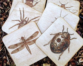 Set of 6 Wooden Bug Coasters - Engraved study of insect on wood coaster housewarming new home gift nature lover