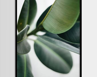 Plant, Plant print, Minimal, Art, Photo, Tropical leaf, Modern art, Wall decor, Digital art, Printable, Digital art Instant Download 16x20