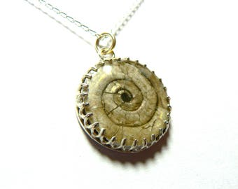 Sterling Silver Ammonite, Ammolite Fossil Filligree Pendant And Chain. Watchet Beach Somerset UK