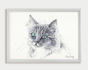 Pet Portrait, Custom Pet Drawing, Commission Art, Personalized Pet Portrait from Photo, Original Pet Cat Lover Gift, Pet Memorial, Pet Loss