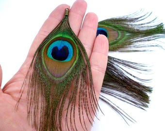 "Large Natural Peacock Feathers Charms_ PP0221558/5647/0021_ Feathers_ Charms/ Peacock OF 13/14 CM _ 5,5""_ pack 3 pcs"