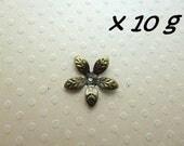 Lot de 10g coupelles bronze 15 mm - L10g608