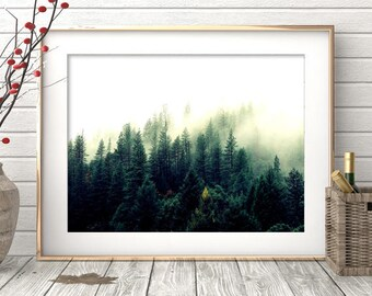 Forest Print, Forest Photography, Forest Wall Art, Nature Prints, Forest Art, Wilderness Poster, Woodland Prints, Modern, Printable Art
