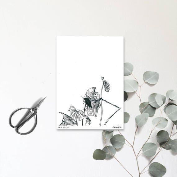 monstera plante verte dessin la main carte postale. Black Bedroom Furniture Sets. Home Design Ideas