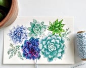 Succulent Postcard, 4 x 6 Inch Card, Turquoise Flowers, Succulent Garden, Succulent Art Print, Watercolor Print, Plant Print, Illustration