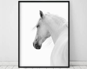 White Horse Photo • Horse Printable Art Horse Art Print White Horse Print Black And White Horse White Horse Horse Wall Art Horse photograph