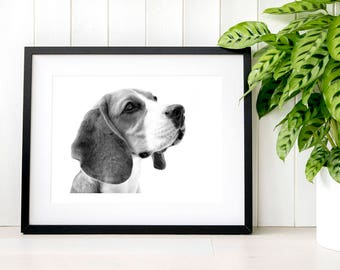 Minimalist black and white beagle photography gift for him Elegant modern art gift for her New home pet gift ideas for couples