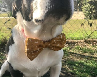 Doggy Bow Tie