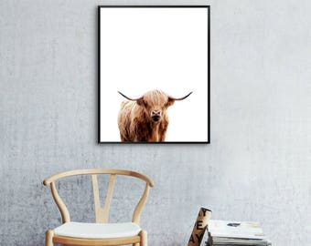 Highland Cow Wall Print, Modern Wall Art, Instant Download, Scottish Cow Print, Cow Wall Art, Brown Cow Print