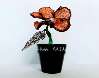 Fiore di Melanzana - vasetto con calamita - Aubergine flower- magnetic pot