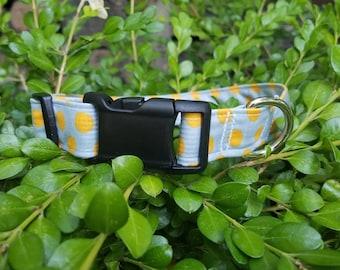 Grey with Orange polkadots dog collar