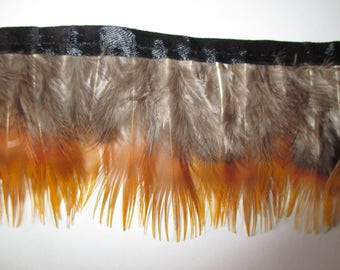 Stripe colors are cream and orange height 6 cm feathers.