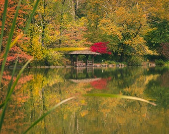 "Central Park, New York City, NYC Photography, Fall Foliage, Urban, Large Wall Print, Fine Art - ""Quiet Sanctuary"""
