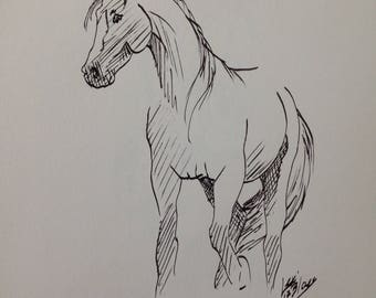 Horse - original ink drawing