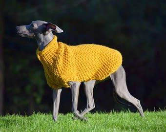 Italian Greyhound Dog sweaters - Mustard & Dark Mustard | Italian greyhound clothes | iggy clothing
