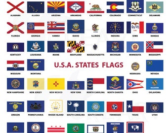 Usa Capital And States Flags Clip Art Collection For Print 50 State Flags Vector