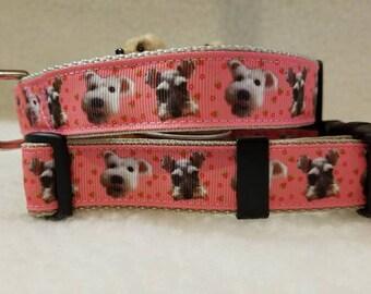 Schnauzer Handmade Dog Collar 1 Inch Wide Medium Only