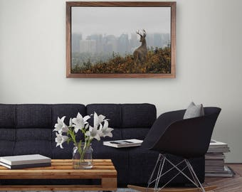 Calgary, Alberta, Canada Photograph - Deer Overlooking the City - With Custom Walnut Frame