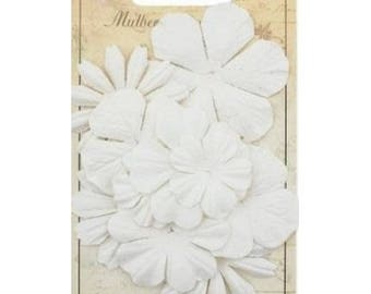 10 flowers, blossoms paper SCRAPBERRY's white case