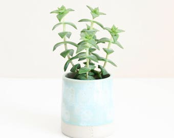 celadon blue little planter, pot, vase, small, handmade, ceramic, wheel thrown, stoneware, glazed