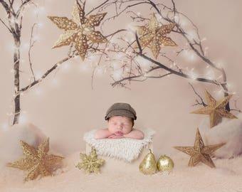 Newborn Digital Christmas Backdrop