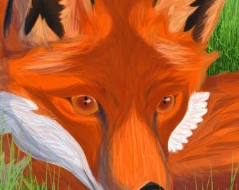 Fox Illustration 1