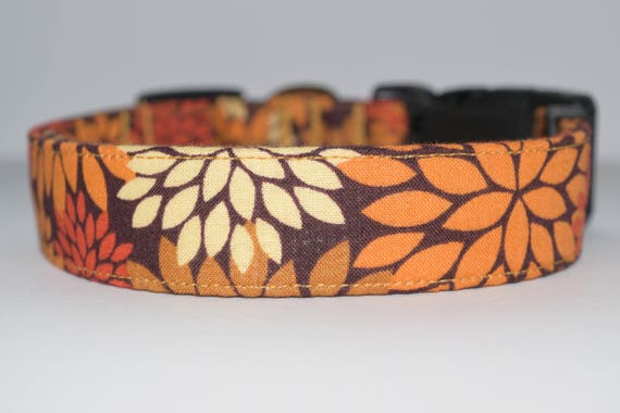 Fall Dog Collar Mums Autumn Thanksgiving Harvest