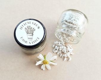 Seed Mini Jar Favour - Personalised Favours, Custom Favours, Wedding Favours, Baby Shower Favours, Bomboniere, Bonbonniere, Seed Favour x 20