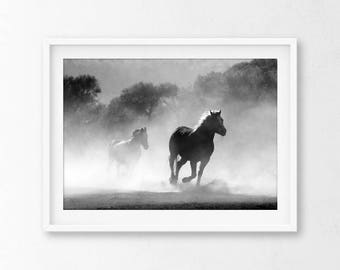 Horse Wall Art, Horse Print, Black and White Horse Print, Horses, Horse Poster, Horse Photography, Animal Print, Wild Horses, Horse Photo