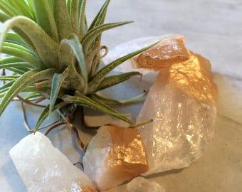 Rose Gold Crystals: Quartz Terrarium Decorations