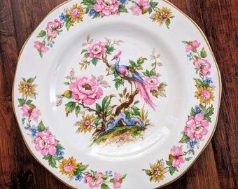 Antique peacock serving plates, set of 7 tea plates