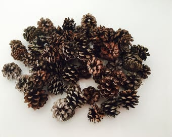 Pine Cone - fall - decor ornament - wood