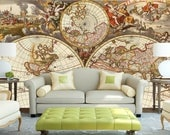 World map wallpaper  Peel  stick  self adhesive and removable  Reusable  High Quality materials  DIY