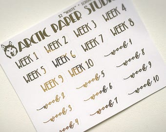 School Week SCRIPTS - FOILED Sampler Event Icons Planner Stickers