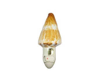 Conus Vexillum Seashell Night Light, Philippines, Wholesale